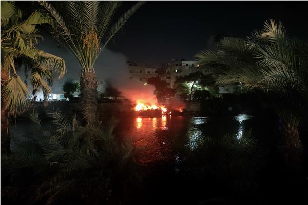 حريق في أشجار بالمنيل
