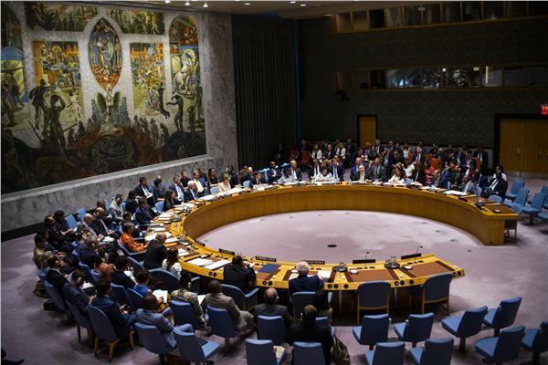 مجلس الأمن - صورة موضوعية