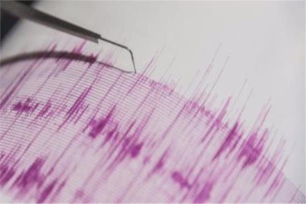 الشبكة القومية لرصد الزلازل