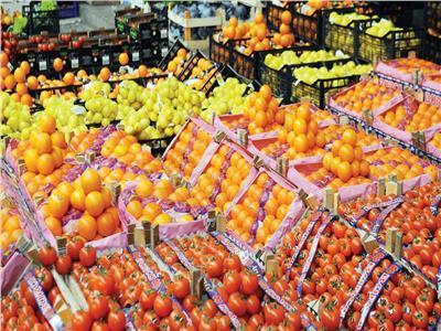تصدير 1.9 طن فاكهة وترخيص بإنشاء 45 حديقة خلال مارس