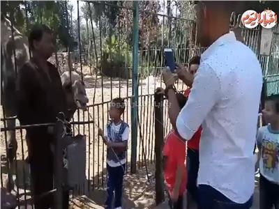 فيديو| توافد المواطنون على حديقة الحيوان في اليوم الأول من عيد الأضحى