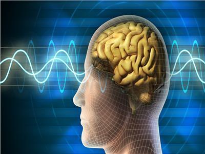 فريق علمي مصري يخترع طريقة جديدة لعلاج سرطان الدماغ