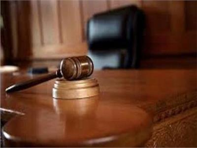 النطق بالحكم في إعادة محاكمة متهم بـ«خلية مدينة نصر الثانية»15 ديسمبر