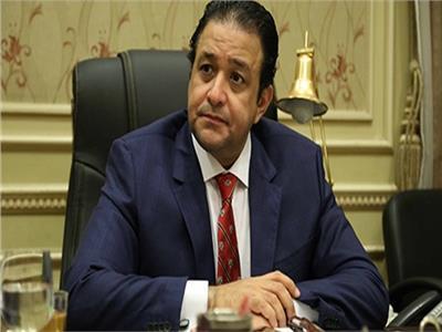 «عابد»:أخبرت مسئولين ألمان أن منظمات المجتمع المدني تزيف الواقع المصري