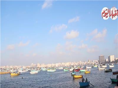 فيديو| أجانب مصر: هذا سر البقاء في أم الدنيا