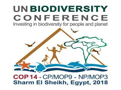 الثلاثاء.. انطلاق المؤتمر العالمي للتنوع البيولوجي بشرم الشيخ