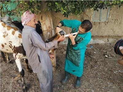صور  «الزراعة»: برامج تدريبية لرفع قدرات العاملين بالوحدات البيطرية