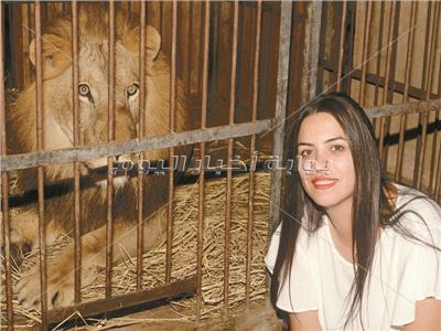حكايات  «أوسة» والأسود.. ترويض الحيوانات المفترسة «بيمشي بالحب»