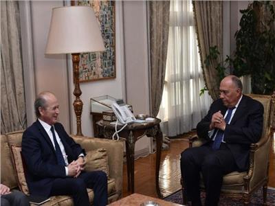 شكري يبحث أبرز مستجدات الأزمة السورية مع المبعوث الشخصي للرئيس الفرنسي