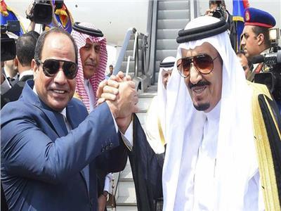 آل الشيخ: مصر والسعودية حريصتان على نشر وسطية الإسلام