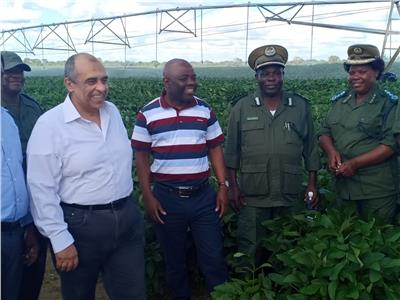 صور| افتتاح أول صوبة مصرية لإنتاج الخضر في زامبيا
