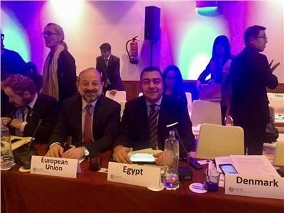 إعادة انتخاب مصر رئيسًا مجموعة عمل بناء قدرات دول منطقة شرق أفريقيا