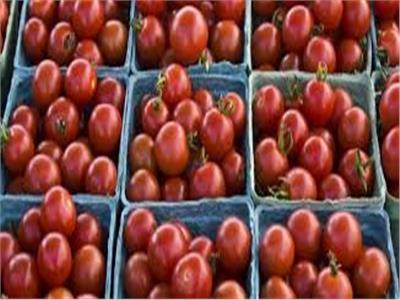 3 طرق سحرية لـ«تخزين الطماطم» قبل رمضان