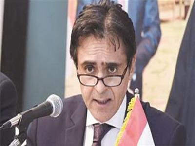 قنصل مصر بـ نيويورك: الجالية المصرية أعظم الجاليات في العالم والاستفتاء كان عرسًا ديمقراطيًا