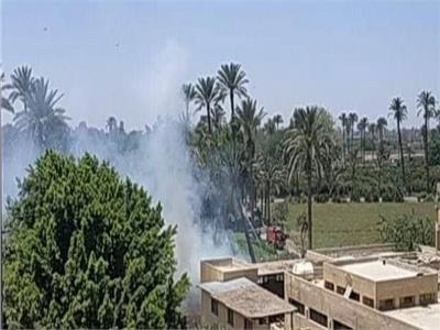 السيطرة على حريق شب بمنطقة النخيل بمدرسة الزراعة بمشتهر بالقليوبية