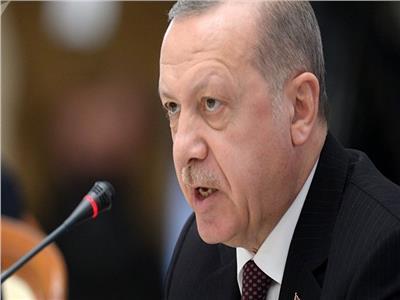 محلل سياسي: اردوغان يسعى للإطاحة بـ«نواب البرلمان» تمهيدا لمحاكمتهم