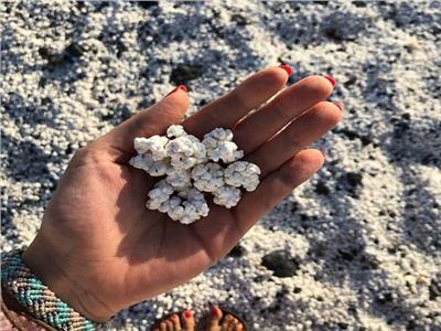 بالصور.. شواطئ جزيرة من «الفشار»