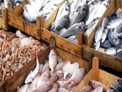 تباين أسعار الأسماك في سوق العبور اليوم ٢٦ رمضان