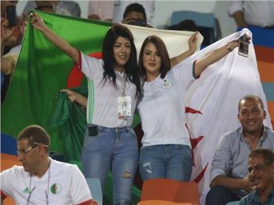 أمم إفريقيا 2019| الجزائر ترفع عدد طائرات نقل المشجعين إلى مصر