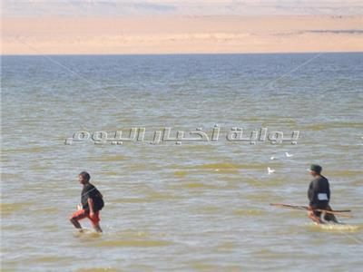 حكايات| الصيد سيرا على مياه «قارون».. «وحش البحيرة» افترس الرزق