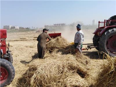 تراجع ظاهرة حرق قش الأرز بالشرقية