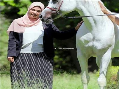 الزراعة: 2.5 مليون جنية حصيلة بيع 18 حصانًا فائض محطة الزهراء| صور