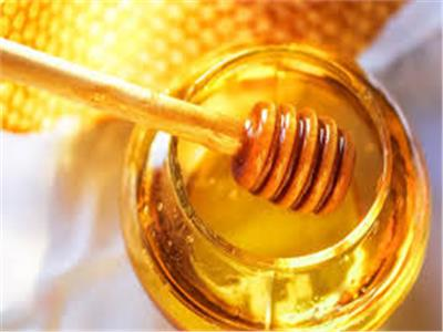 باحثون يستعينون بنوع من «العسل» لمقاومة البكتيريا