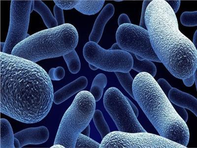 علماء كنديون يطورون سطحًا ذاتيًا التنظيف ضد البكتيريا