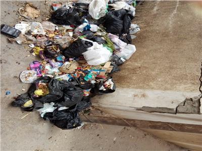 امسك مخالفة| القمامة تحاوط كلية الطب البيطري في الزقازيق