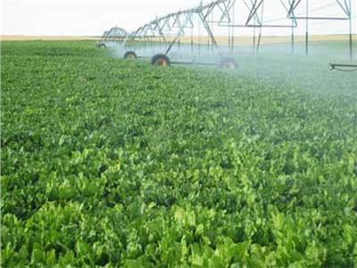نهضة زراعية غير مسبوقة في عهد السيسي.. 281 مشروعا بتكلفة 26 مليار