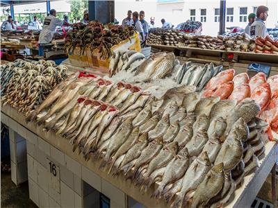 بورصة أسعار الأسماك في سوق العبور اليوم.. و البلطي وصل ١٨ جنيه