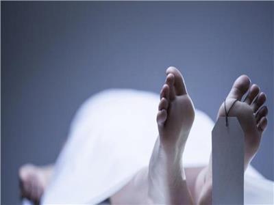 أمن المنيا يكثف جهوده لكشف ملابسات العثور على جثة بالزراعات