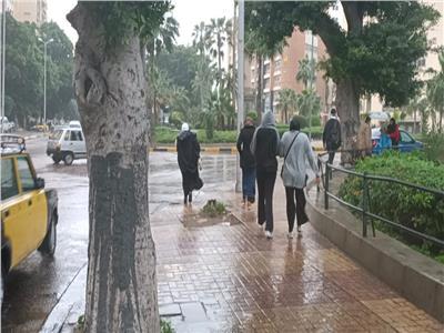«الفيضة الكبرى» مستمرة.. أمطار غزيرة ورياح تجتاح الإسكندرية| صور