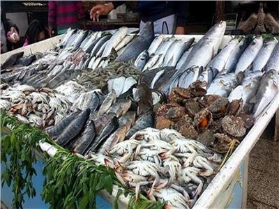 أسعار الأسماك في سوق العبور بسادس أيام شهر رمضان المبارك