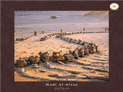بالصور.. 6 مواقع مصرية ضمن مواقع التراث العالمي