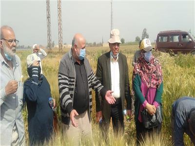 «الزراعة» تستعرض تقريرا حول أنشطة معهد بحوث أمراض النباتات