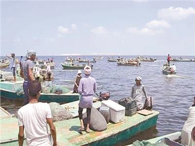 أسماك البردويل حطمت الأسعار فى أسواق «شمال سيناء»