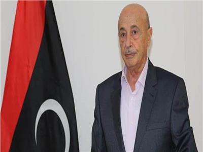 رئيس النواب الليبي والمبعوث الأممي يبحثان الخيارات المتاحة للانتخابات