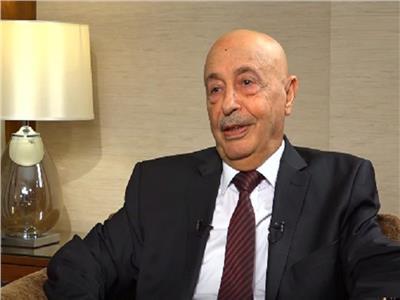 حوار| رئيس «نواب ليبيا»: لن ننسى مواقف مصر في الأزمة الليبية
