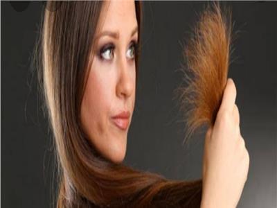 5 طرق منزليةلحماية أطراف الشعر من التقصيف