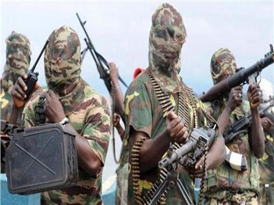 الكاميرون تعلن عن استسلام 50 مسلحًا بجماعة بوكو حرام المتطرفة