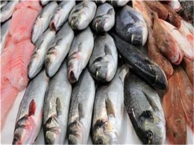 أسعار الأسماك في سوق العبور اليوم 26 يوليو