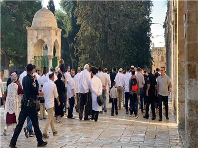 165 مستوطنًا إسرائيليًا يقتحمون المسجد الأقصى