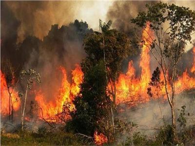 المروحيات الروسية تشارك بإطفاء الحرائق اللبنانية