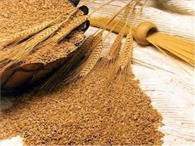 وزارة التموين: الفرد فى مصر يستهلك 182 كيلو جرام قمح فى العام الواحد
