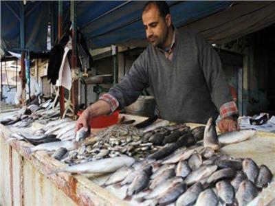 استقرار أسعار الأسماك في سوق العبور.. اليوم الخميس
