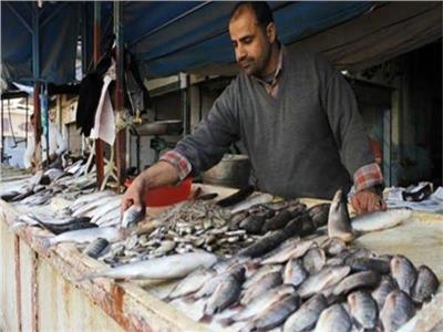 استقرار أسعار الأسماك في سوق العبور.. اليوم الثلاثاء