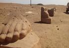 """صور.. ماذا تعرف عن صان الحجر """"تانيس"""" وعن حملة إنقاذها"""