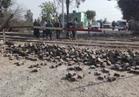 السكة الحديد: ونش يقتحم مزلقان ميت حلفا على خط القاهرة الإسكندرية