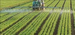 حصاد الزراعة  ارتفاع الصادرات الزراعية وفتح أسواق جديدة وكلمة السر «2017»